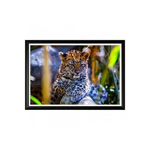 Арт-постер «Котенок леопарда»