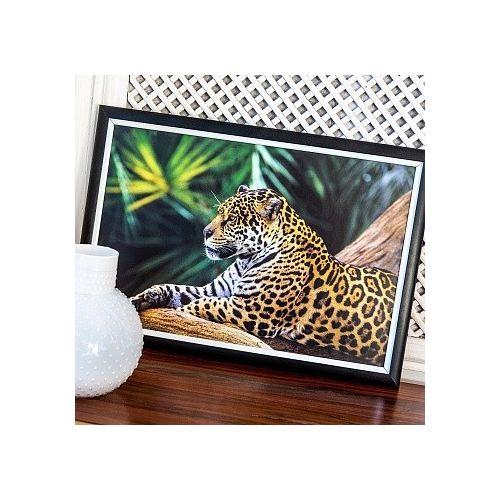 Арт-постер «Индийский леопард»